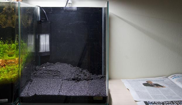 Nano aquarium einrichten experiment 2 teil 2 for Boden aquarium