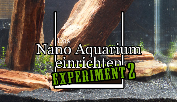 nano aquarium einrichten experiment 2 teil 2. Black Bedroom Furniture Sets. Home Design Ideas