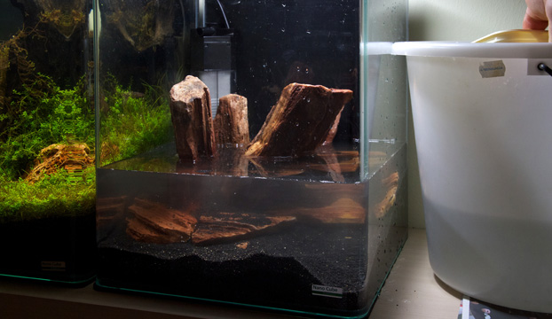 Nano Aquarium Einrichten Experiment 2 Teil 2 Aquariumeinrichten