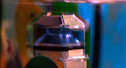 aquarium einrichten wasser wie richte ich mein aquarium ein. Black Bedroom Furniture Sets. Home Design Ideas
